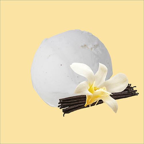 vegan vanilla pod